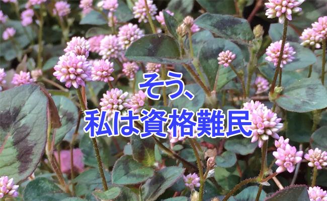 橋本1_edited-1